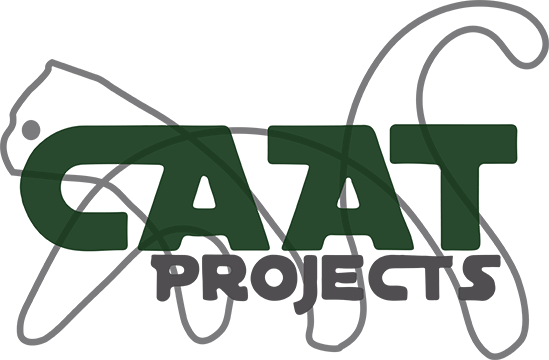 Stichting CAAT Projects